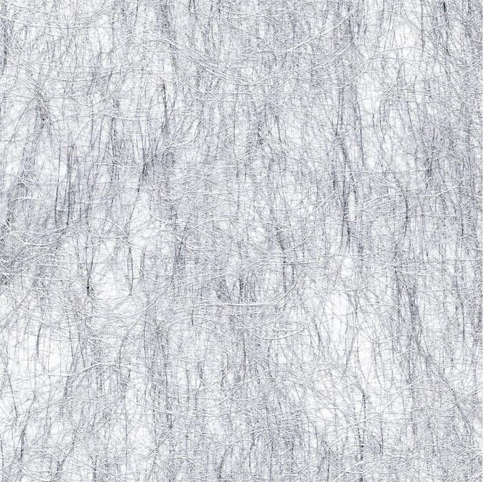 ХАРИЗМА 7013 серебро